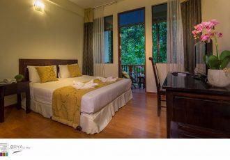 Premier Room (eRYAbySURIA Janda Baik)
