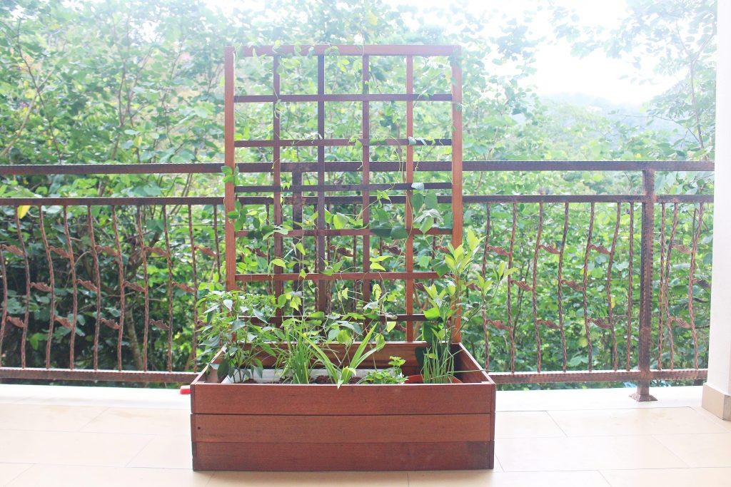 Planter Box 1-min