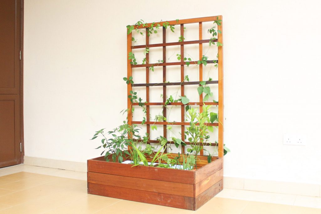 Planter Box 12