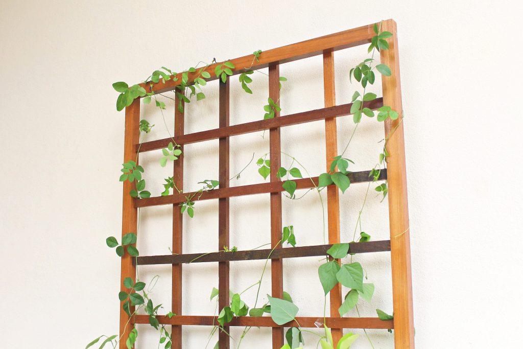 Planter Box 15-min