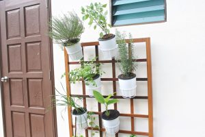 thumbnail_Planter Box Deluxe (3)
