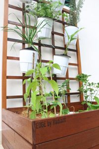 thumbnail_Planter Box Deluxe (4)