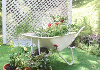 English Garden (4)-min