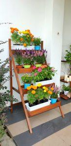 Ladder Planter_Flowers 2 LQ