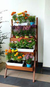 Ladder Planter_Flowers 3 LQ