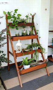 Ladder Planter_Greenery 2 LQ