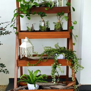 Ladder Planter Greenery