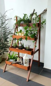Ladder Planter_Rustic_Day 2 LQ