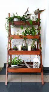 Ladder Planter_Rustic_Day LQ