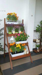 Ladder Planter_Sweet_Day LQ