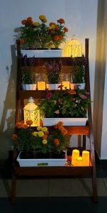 Ladder Planter_Sweet_Night 3 LQ