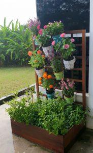 Planter Box_Veg & Flowers 2 LQ