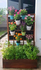 Planter Box_Veg & Flowers LQ